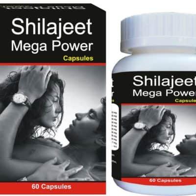 Shilajeet1